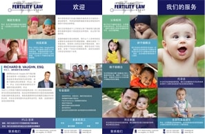 IFLG-International-Fertility-Law-Group-CHINESE-One-Sheet