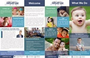 IFLG - International Fertility Law Group - One-Sheet-3