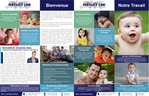 IFLG-International-Fertility-Law-Group-One-Sheet-French