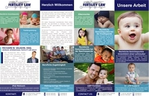 IFLG-Marketing-Fact-Sheet-GERMAN