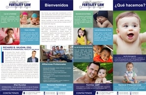 IFLG-International-Fertility-Law-Group-SPANISH-One-Sheet