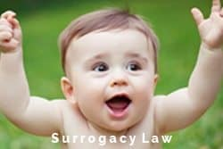 international-fertility-law-group-surrogacy-law-IFLG-SLIDER-FINAL2.jpg